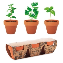 3 pots en terre