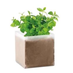 Substrat avec graines Menthe